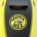 superbeeimage6